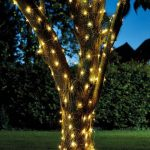 Smart Solar 50 LED Firefly String Lights (Warm White)