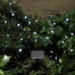 Smart Garden Solar 30 Stars Light String