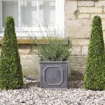 Smart Garden Boxwood 60cm Obelisk