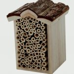 Chapelwood Bee Box