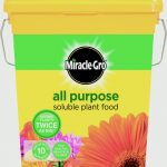 Miracle-Gro All Purpose Plant Food Tub – 2Kg