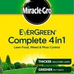 EverGreen Complete 4 in 1 Refill – 80m2 +25% FREE