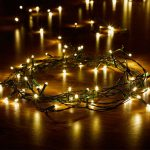 Smart Garden 100 LED String Lights (Warm White)