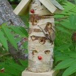 Ladybird Tower with Pole