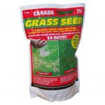 Canada Grass Seed 1KG pk