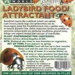 Ladybird Food / Attractant