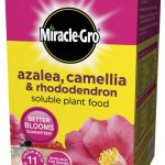 Miracle-Gro Ericaceous Plant Food – 1Kg