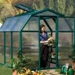 Rion Eco 6X10 Greenhouse