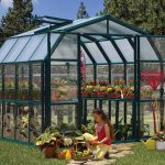 Rion Grand 8X20 Greenhouse – Clear Glazing