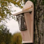 Wildlife World Tree Creeper Nest Box