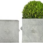 Fallen Fruits Square Lion Planter (Set of 2)