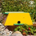 Wildlife World New Bumblebee Nester & Mini Mammal Habitat