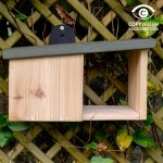 Wildlife World Simon King Wooden Robin Nest Box