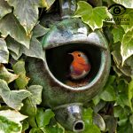 Wildlife World Robin Teapot Nester (Green Ceramic)