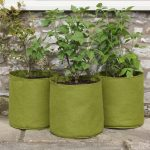 Haxnicks Vigoroot Pots 20L(3 Pack)