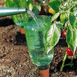 Bio Green Hydro Cup Raised Bed Watering System 5 Pack Set